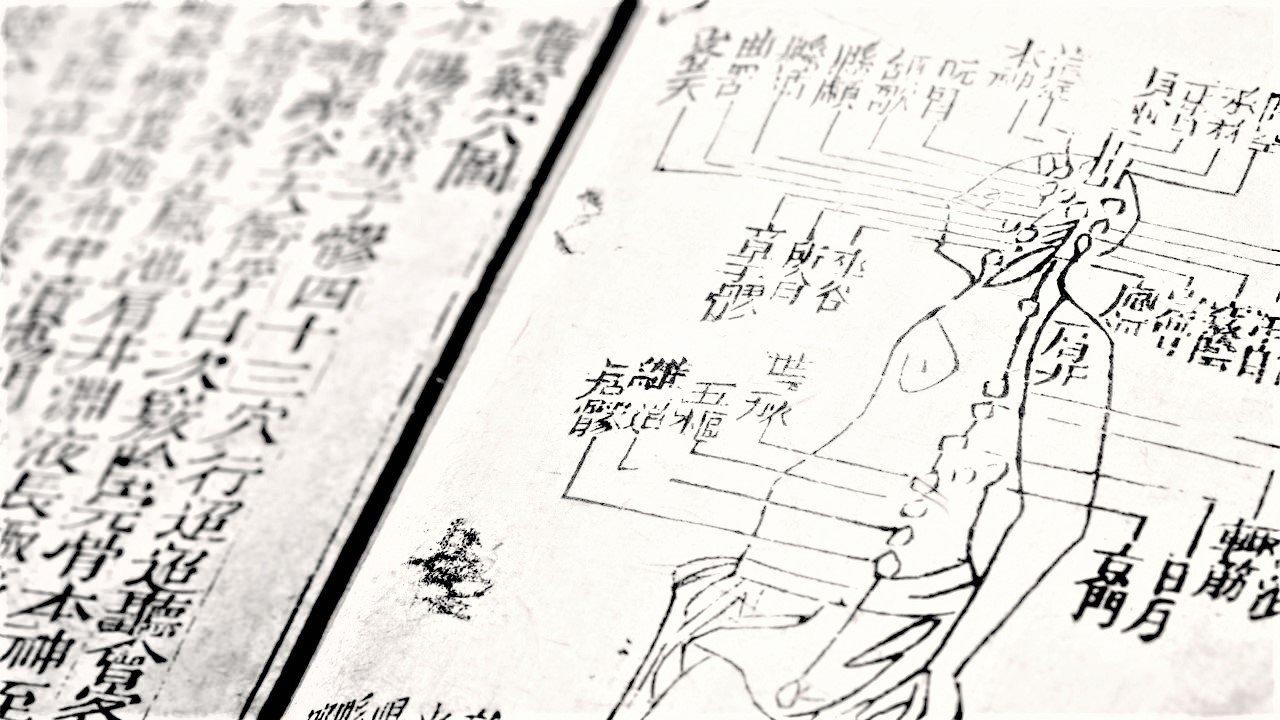 trattato di MTC (Medicina Tradizionale Cinese)